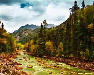 Animas River Valley